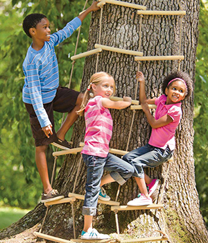 Kid's climbing tree with active play