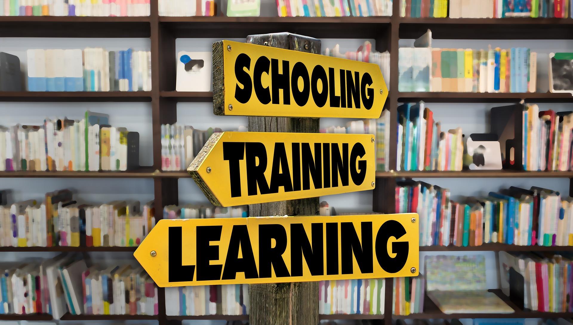 Schooling, Training, Learning